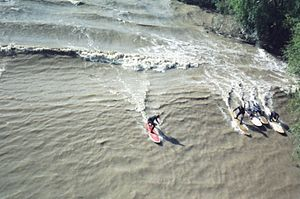 River surfing - Surfers on the Severn bore