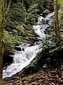 Roaring Fork Falls Black Mountain Campground Pisgah Nat Forest NC 4343 (37238366534).jpg