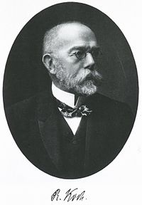 Dr. Robert Koch discovered the tuberculosis bacilli.