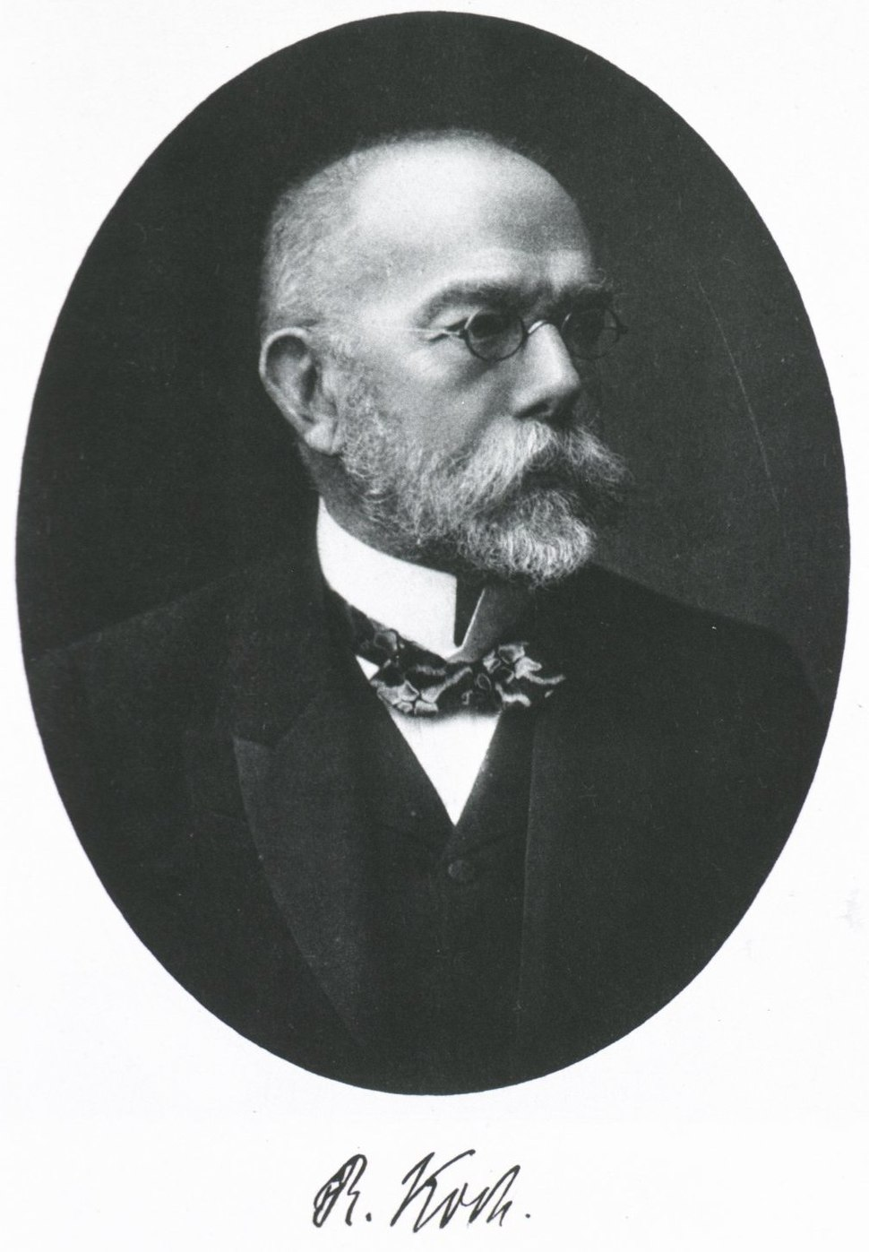 RobertKoch