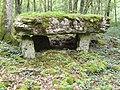 Rochefort-sur-la-Côte (Haute-Marne) dolmen du bois de la Grande Bay (04).jpg