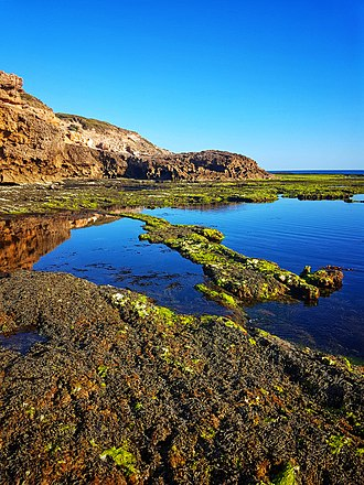 Mornington Peninsula National Park - Rock pools and reflections at Sorrento, Mornington Peninsula National Park