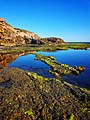 Rock pools and reflections at Sorrento, Mornington Peninsula National Park.jpg