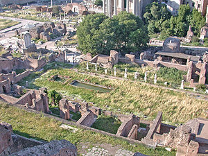 Vestal Virgin - House of the Vestals and Temple of Vesta from the Palatine