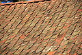 Roof tiles with lichen-3.jpg