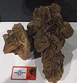 Rosa del desierto - Exposición Tesoros en las rocas Museo Elder Las Palmas de Gran Canaria (5270080278).jpg