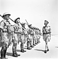 Royal Engineers, Haifa חיל הנדסה, חיפה-ZKlugerPhotos-00132iv-0907170685126fbc.jpg