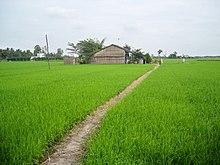 Long An \u2013 Wikipedia ti\u1ebfng Vi\u1ec7t