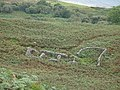 Ruins at Laggan Arran - geograph.org.uk - 1054241.jpg