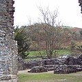 Ruins at Talley Abbey - geograph.org.uk - 743554.jpg