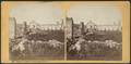 Ruins of Fort Ticonderoga, N.Y, by Styles, A. F. (Adin French), 1832-1910.png