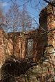 Ruiny pałacu myśliwskiego – Grodziszcze (zetem)1.jpg