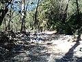 """Rumbo a """"La Chaquira"""" - panoramio.jpg"""
