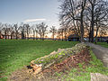 Ruskin Park at sunset (12036614105).jpg
