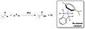 Ruthenium based catalyst.jpg