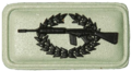 SANDF Insignia Musketry Sniper badge embossed.png