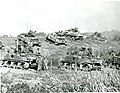 SC 206511 - During a respite in the hard fighting on Okinawa, these medium U.S. tanks bunch up closely on a rolling ridge, 1945.jpg