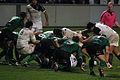 ST vs Connacht 2012 59.JPG
