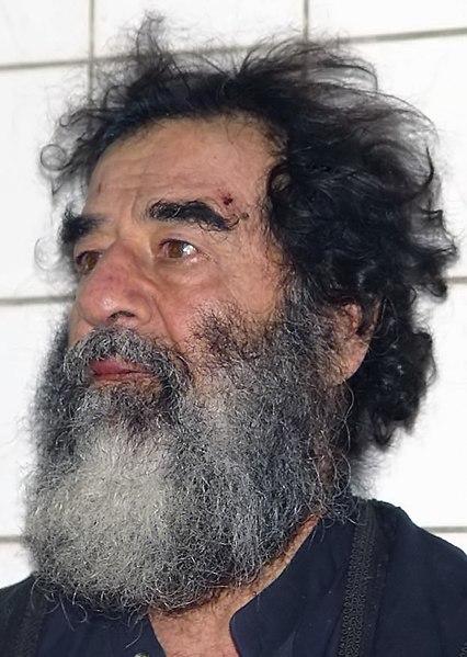 Ficheiro:Saddamcapture.jpg