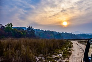 Safari at Rajaji National Park (Haridwar).jpg