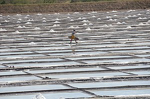 San Jose, Occidental Mindoro - Salt farm in San Jose.
