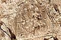 Sar-e Pol-e Zahab, relief IV.jpg