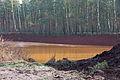 Schlammsickergrube am Wasserwerk Elze-Berkhof im Forst Rundshorn IMG 6015.jpg