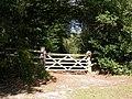 Set Thorns, gate - geograph.org.uk - 1507659.jpg
