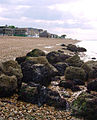 Shingle beach looking west - geograph.org.uk - 817507.jpg
