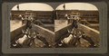 Shipping beef to the Chicago market, cattle industry, Montana, U.S.A, by Keystone View Company.png