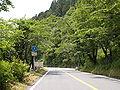 Shizuoka-r1-Sakuma.JPG