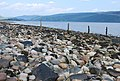 Shore of Loch Fyne - geograph.org.uk - 461011.jpg