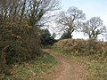 Shortwood Lane - geograph.org.uk - 1180709.jpg