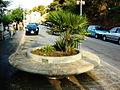 Sicily-street.jpg