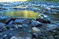 Sill at river Måna, Rjukan - Cellerterskel ved Måna på Rjukan (6302484830).jpg