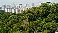Singapore Southern Ridges 13.jpg