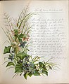 Skelding-Violets-and-White-Clover-1883.jpg