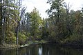 Slate Run-Wetlands in Fall 4.jpg