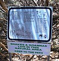 Snakes and Goannas. Olive Pink, Alice Springs 01.jpg