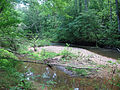 South Fork Quantico Creek PRWI.JPG