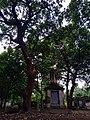 South Park Street Cemetery-Kolkata-West Bengal-DSC0010.jpg