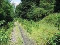 Spot the railway^ - geograph.org.uk - 947865.jpg