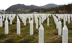 Gravestones at the Potočari genocide memorial near Srebrenica.  Image: Michael Büker.