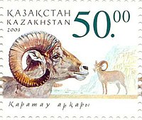 Stamp of Kazakhstan 419.jpg