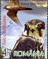 Stamps of Romania, 2007-033.jpg