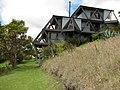Starr-100616-2880-Phormium tenax-flowering habit with Forest-Waipoli Rd Kula-Maui (24922313052).jpg
