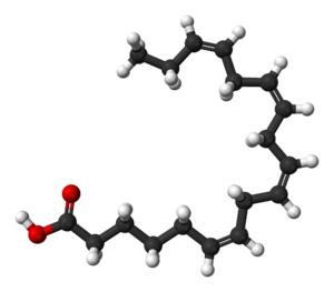 Stearidonic acid - Image: Stearidonic acid 3D balls
