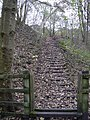Steps to disused rail Line - geograph.org.uk - 1036450.jpg