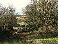 Stile near Marldon Road - geograph.org.uk - 1079911.jpg