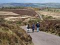 Stoke Pero Common - geograph.org.uk - 1284071.jpg